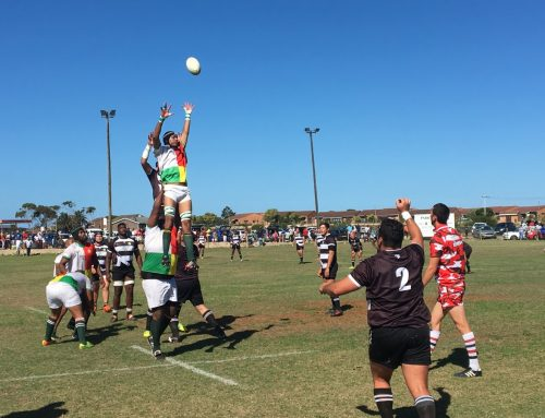 Harlequins power into final
